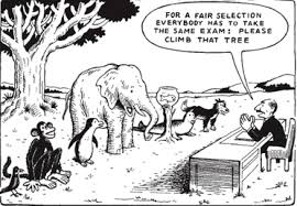 "Cartoon Monkey says to line up of all kinds of animals including fish and elephant ""for a fair selection everybody has to take the same exam. Please climb that tree"""