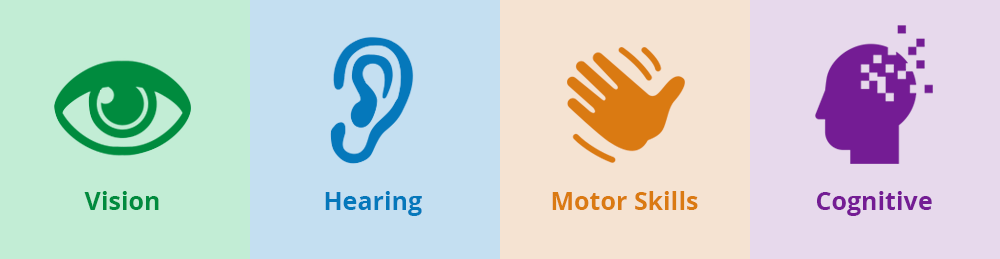 Types of accessibility issues include vision hearing motor skills and cognitive